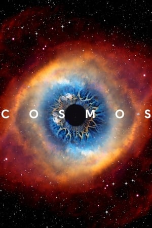 Cosmos: A Spacetime Odyssey (2014) Episode 01-13 End