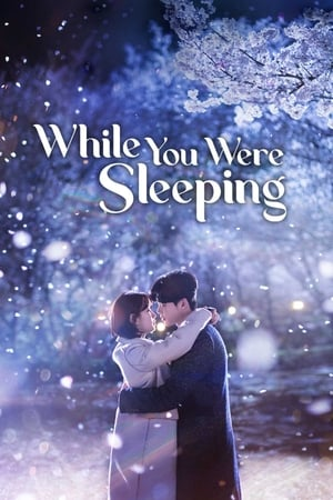 While You Were Sleeping (2017) Episode 01-16 End