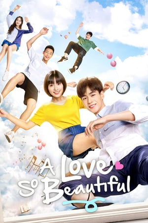 A Love So Beautiful (2017) Episode 01-24 End