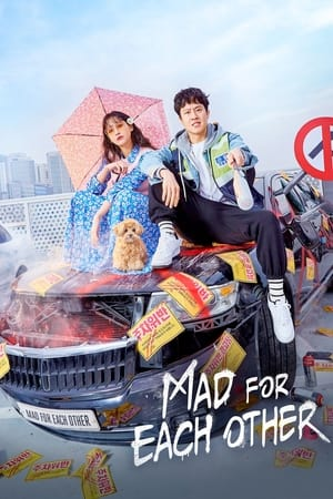 Mad for Each Other (2021) Episode 01-13 End